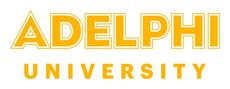 Adelphi MBA Manhattan
